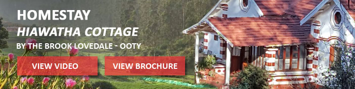 Hiawatha Cottage - Ooty
